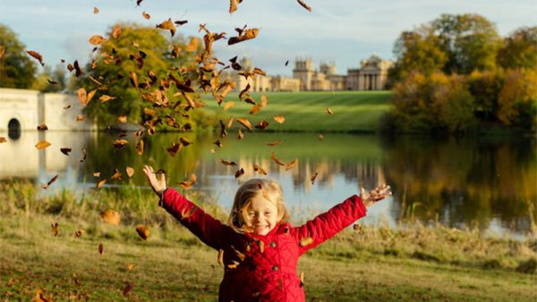 Autumn at Blenheim