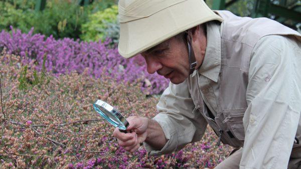 Nature Detectives at Beaulieu